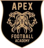 APEX Sports Academy